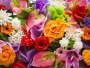 Acheter des fleurs en ligne