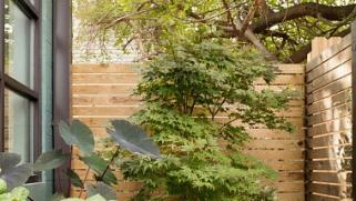 Quel bois pour une clôture de jardin ?