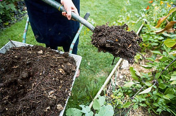guide-achat-comment-choisir-terreau-jardin